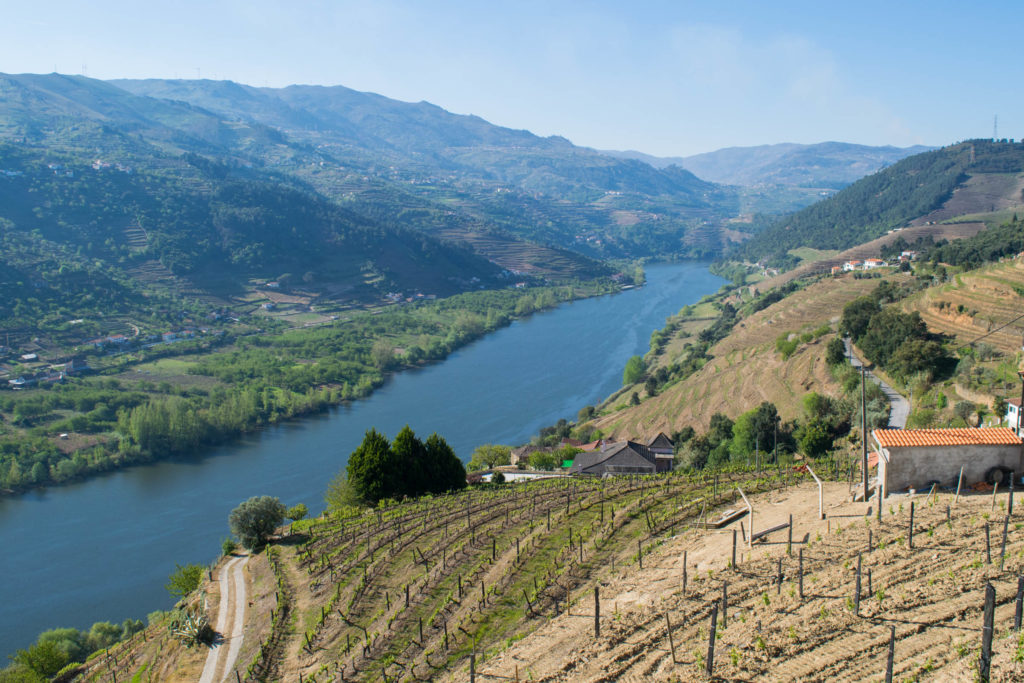 A Cool Wine Tour of the Douro Valley, Portugal
